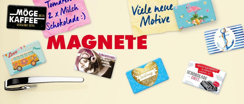 magnete_2016